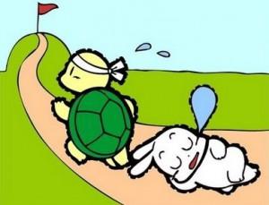 rabbit-and-tortoise-thumb