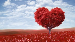 love-heart-tree-red-field-flower-wallpaper