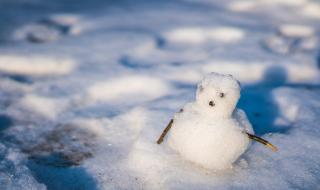 20160119雪だるま