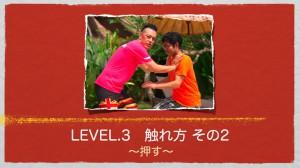 Level.3