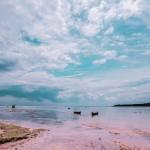 th_20170407シークレットビーチ-3